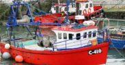 IRELAND ANNOUNCES FISHERIES BUDGET (1)