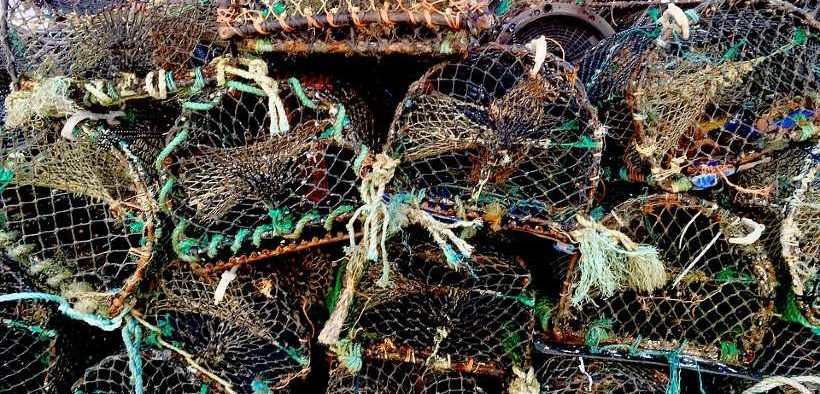 Irish Seafood Sector Task Force publishes Brexit impact report