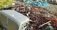 SCOTTISH PROJECT SEES FISHERS REMOVE DEBRIS (1)