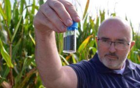 Skretting launches new hatchery diet