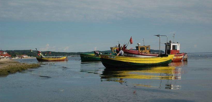 Western Baltic cod quota slashed